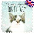 イギリス製グリーティングカード(message:Have a Purrrfect BIRTHDAY)